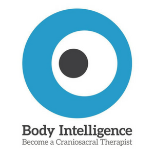 Body Intelligence Trainings